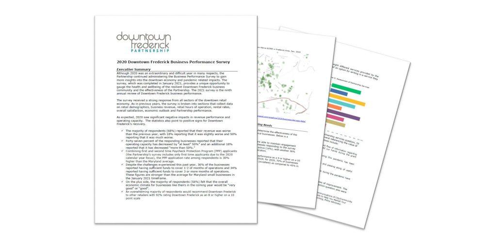 2020 Business Performance Survey