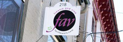 Freesia and Vine