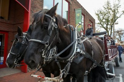Free Carriage Rides